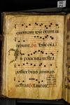 Antiphonary (seq. 028)