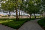 Fenwick Green Space by Christian Sheehy
